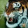 1001_20864467_avatar
