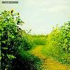 1001_12406530_avatar