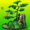 1001_519688926_avatar