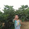 1001_152083708_avatar