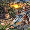 1001_1440705873_avatar