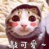 1001_192482822_avatar