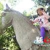 1001_194361350_avatar