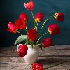 1001_1062818925_avatar