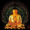 1001_1280323909_avatar