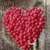 1001_446816918 large avatar