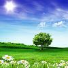 1001_1321216499_avatar