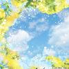 1001_456912179_avatar