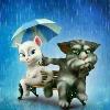 1001_203379457_avatar