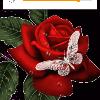 1001_709808771_avatar
