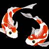 1001_1354456314_avatar