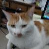1001_815648004_avatar