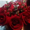 1001_1966781981_avatar