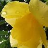 1001_681439530_avatar