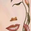 1001_1450396204_avatar