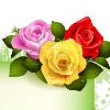 1001_197250905_avatar