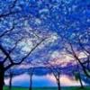 1001_1300084675_avatar