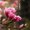 1001_1091632599_avatar