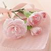 1001_1231044747_avatar