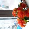1001_1599052157_avatar