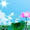1001_1550411122_avatar