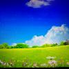 1001_1153863761_avatar