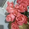 1001_1431779820_avatar