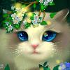 1001_2048778207_avatar