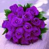 1001_694013419_avatar