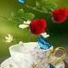 1001_2176988555_avatar