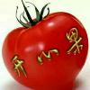 1001_1015627693_avatar