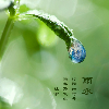 1001_173052309_avatar