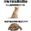 1001_258774762_avatar