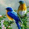 1001_1423094516_avatar