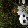 1001_905820794 large avatar