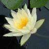 1001_165387901_avatar