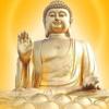 1001_250497722_avatar