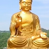 1001_446826074_avatar