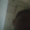 1001_1986983794_avatar
