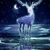 1001_601036354_avatar