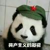 1001_360774580 large avatar