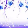 1001_315576209_avatar