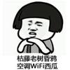 1001_641282858_avatar