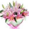 1001_157853406_avatar