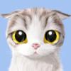 1001_269928105_avatar