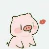 1001_15724488115_avatar