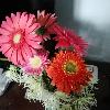 1001_1619764406_avatar