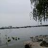 1001_488521921_avatar