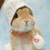 1001_1039380301_avatar