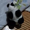 1001_1410048803_avatar